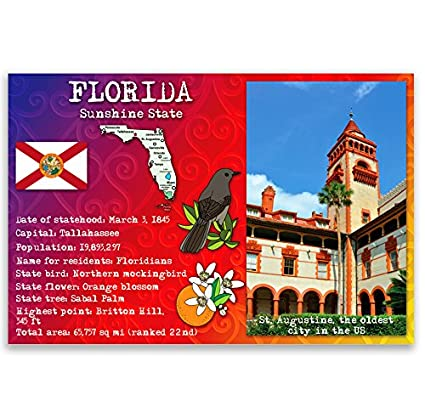 Amazon Florida State Facts Postcard Set Of 20 Identical