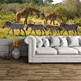 Zebras & Giraffes In Savannah, African Animals Wall Mural Nature Photo Wallpaper available in 8 Sizes XXX-Large Digital