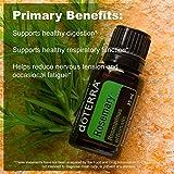 doTERRA - Rosemary Essential Oil - 15 mL