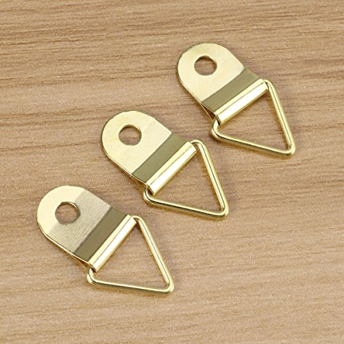WINOMO 50pcs Small Triangle D-Ring Single Hole Picture Frame Hangers Holders with M2 x 6 ()