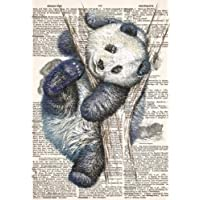 Panda Dictionary Art Notebook with Chinese Proverbs and Inspirational Quotes (A5): A Classic A5 Sized Ruled Composition Book/Journal with Lined Pages and Other Gifts for Women and Teen Girls