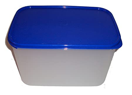 Tupperware Modular amigos rectangular # 3 Azul: Amazon.es: Hogar