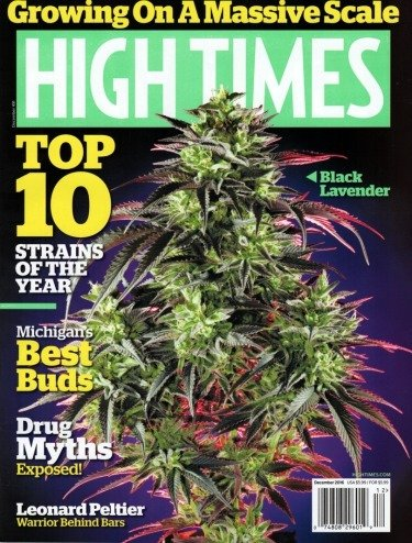 """High Time Magazine #491 December 2016 """"Growing on a Massive Scale"""" Top Ten Strains of the Year PDF"""