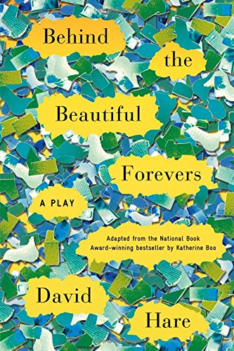 Download Behind the Beautiful Forevers: A Play pdf