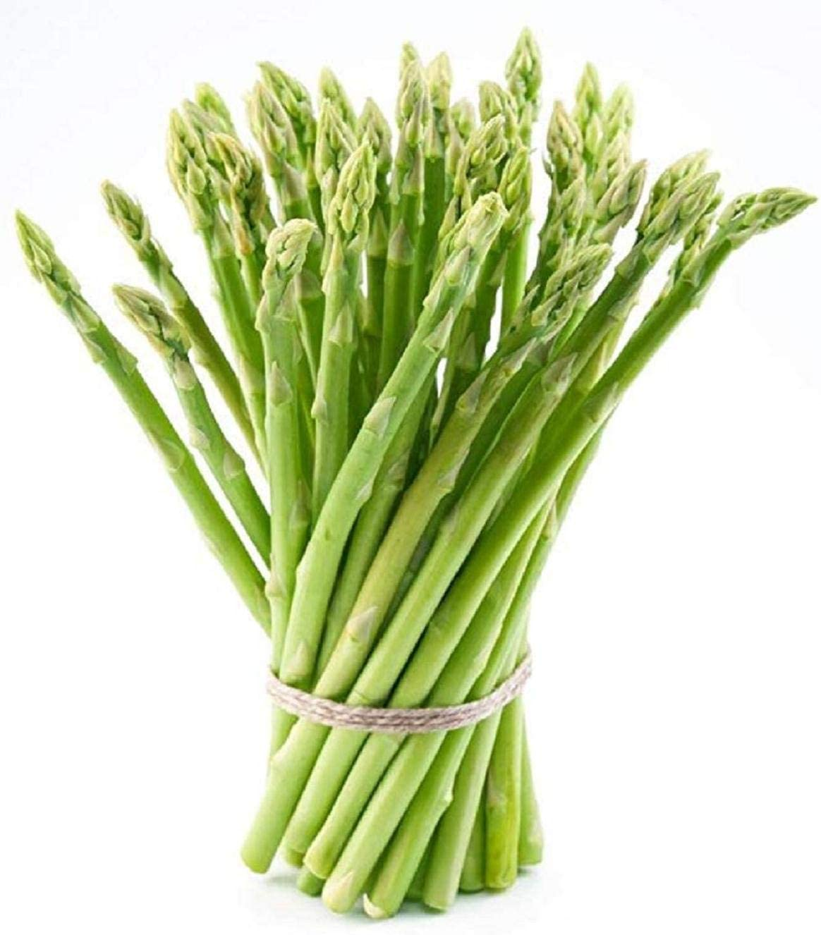 Amazon Com 10 Extra Large 2nd Year Green Asparagus Plants Roots With Asparagus Crowns Garden Outdoor