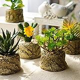 Mkono Miniature Artificial Succulents Plants with Cement Planters, Set of 4