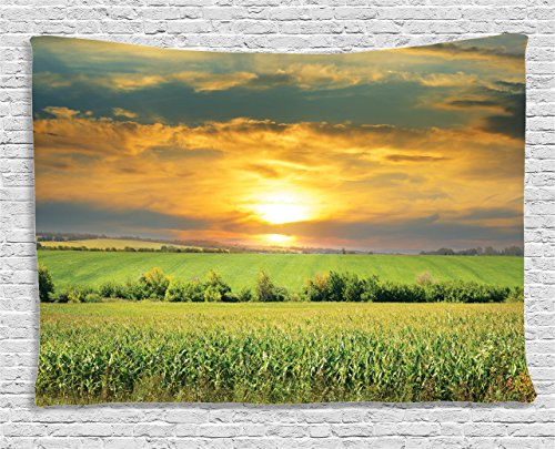 (Ambesonne Farm House Decor Collection, Corn Field and Sunrise on Summer Sky Natural Paradise Pasture Mourning View Picture, Bedroom Living Room Dorm Wall Hanging Tapestry, 80W X 60L Inch, Yellow)