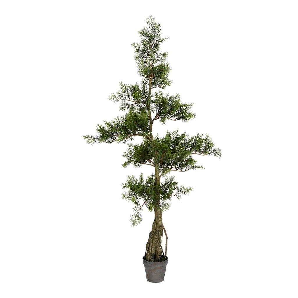 Vickerman TB180148 Green Potted Cedar Everyday Tree
