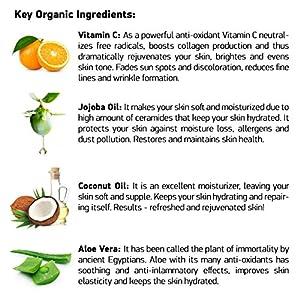 Anti Wrinkle Cream – Anti Aging Cream – Anti Aging Moisturizer for Face and Best Wrinkle Treatment – Rejuvenating Vitamin C Cream + Vitamin B5 + Antioxidants + MSM + Jojoba Oil + Aloe Vera – Organic