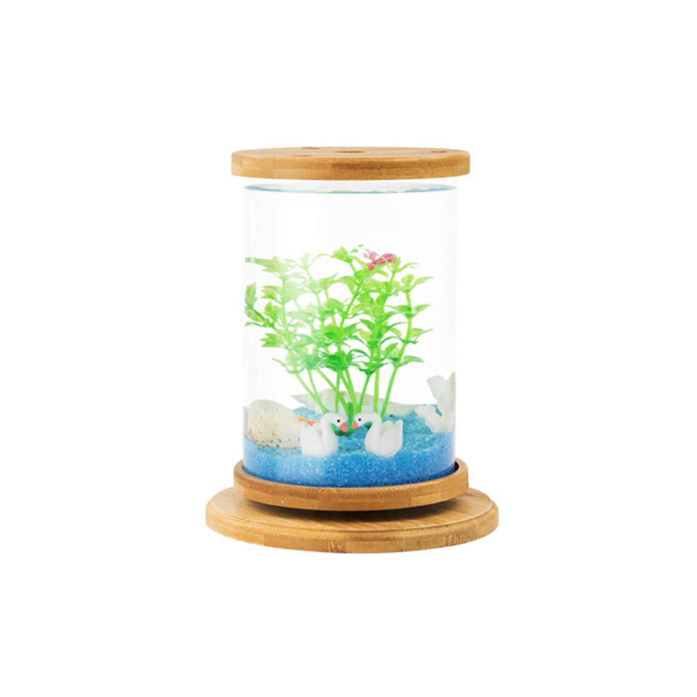 NUOBIKJ Betta Fish Tank Eco-Aquarium Fish Tank DIY Small Desktop Creative Micro-Landscape Mini-Office Betta Fish Tank Lazy Package One by NUOBIKJ