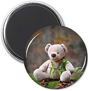 Teddy Bear Forestry Science Nature Refrigerator Magnet Sticker Decoration Badge Gift