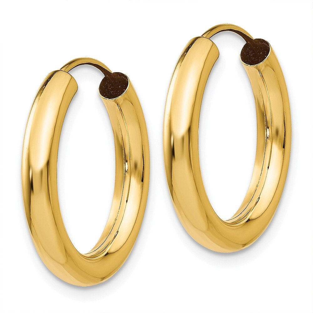 14K Yellow Gold Polished 20mm Endless Round Hoop Earrings