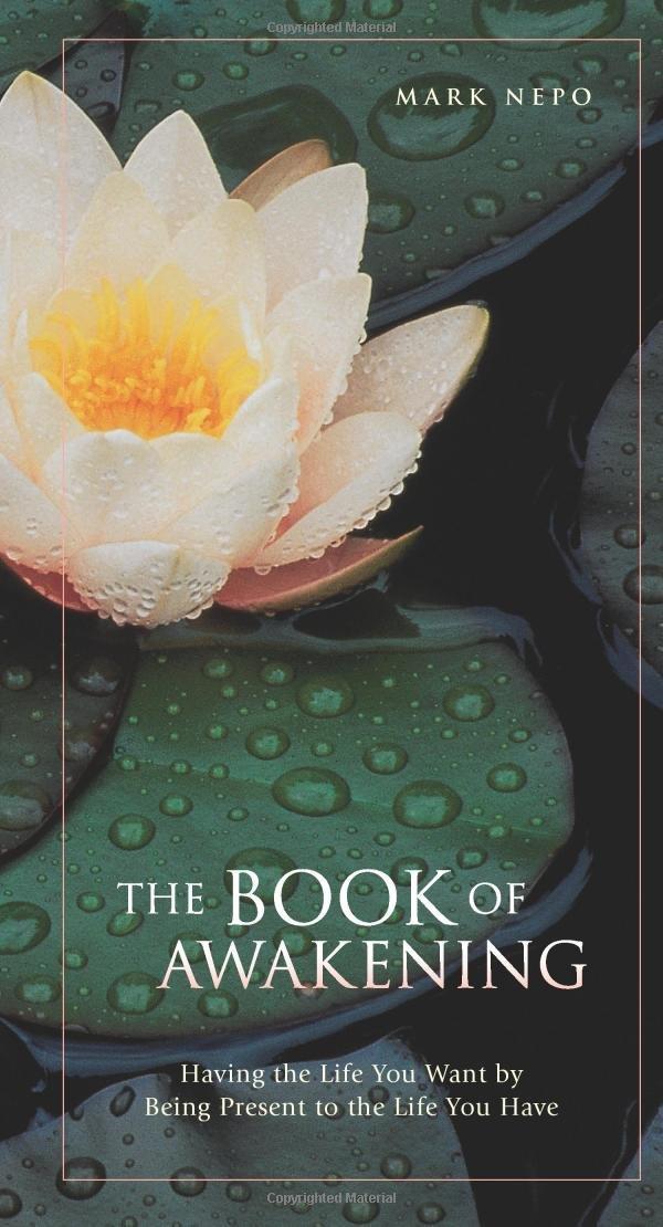 Book Awakening Having Being Present product image