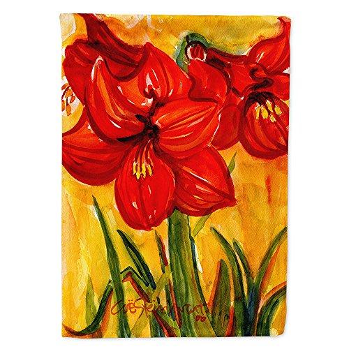 - Caroline's Treasures 6067CHF Flower Amaryllis Flag Canvas, Large, Multicolor