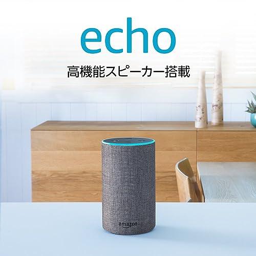 Echo 第2世代 ヘザーグレー