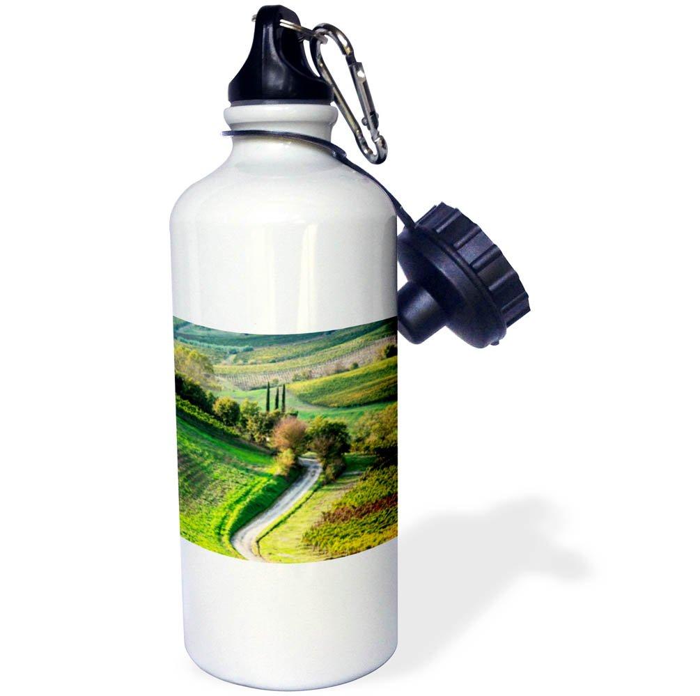 3dRose Danita Delimont - Italy - Italy, Tuscany, Chianti, Autumn, Road running through vineyards - 21 oz Sports Water Bottle (wb_277668_1)