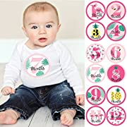 Flamingo - Party Like a Pineapple - Monthly Baby Sticker Set - Baby Shower Gift Ideas - 12 Piece