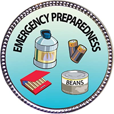 Keepsake Awards Emergency Preparedness Award, 1 inch Dia Silver Pin Personal Skills Collection: Toys & Games