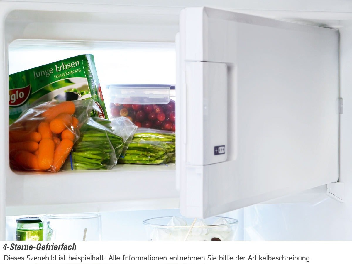 Liebherr T 1504 Tisch-Kühlschrank / A+A+ / 191 kWh/Jahr / 117 L ...