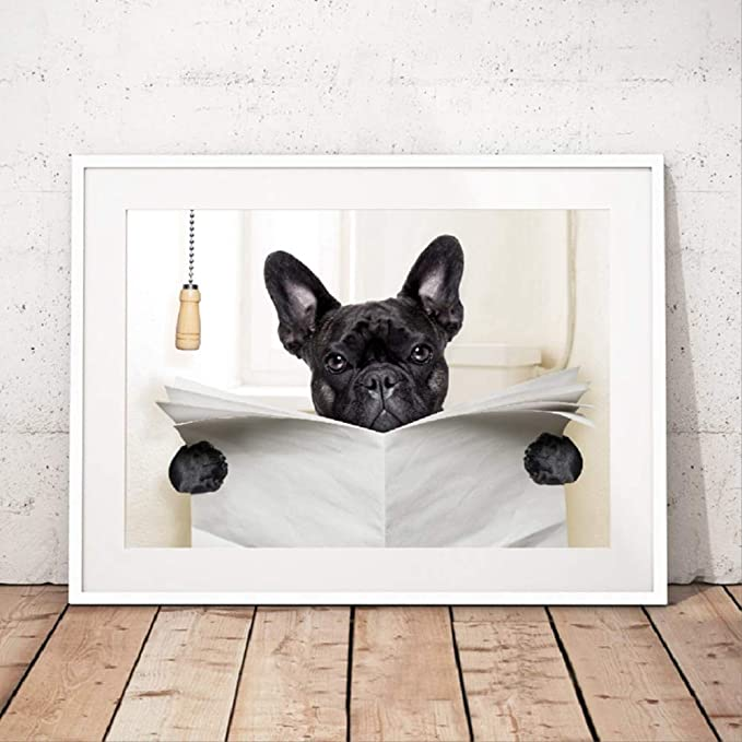 BOSTON TERRIER BATHroom wall art  dog art PRINT 11x14 animals gift new