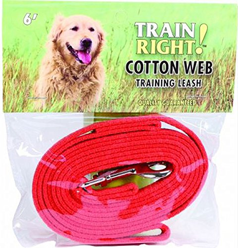 Coastal Pet Cotton Web Dog Leash Training Lead (Red, 30 ft. L x 5/8 Inch W) by Coastal Pet