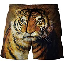 Men's Fitted Casual Shorts and Quick-Drying Sports Pants, Tiger,Athletic Shorts