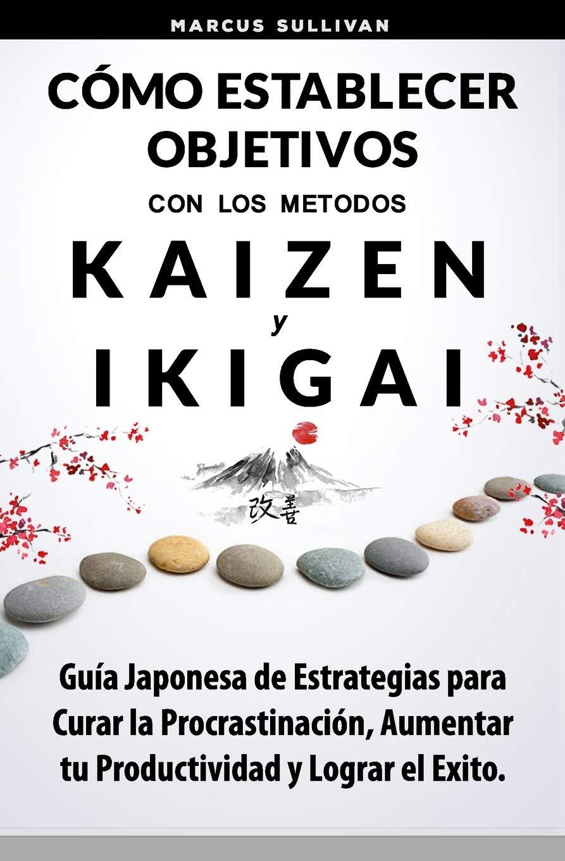 Cómo Establecer Objetivos con los Metodos Ikigai y Kaizen ...
