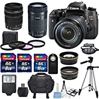 Canon EOS Rebel T6s 24.2MP DSLR Digital Camera -US Warranty &EF-S 18-135mm f/3.5-5.6 IS STM &EF-S 55-250mm f/4-5.6 IS STM Lens +HD 58mm wide angle & Telephoto Lens +Total of 32GB SDHC Deluxe Bundle Basic Facts Review Image