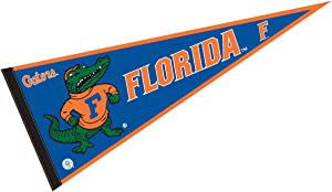 College Flags & Banners Co. Florida Gators Pennant Full Size Felt