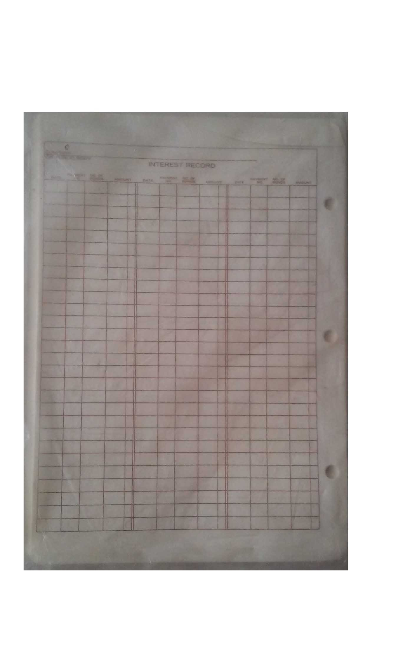 Emco Interest Record 6'' x 9'' 3 Hole Punch