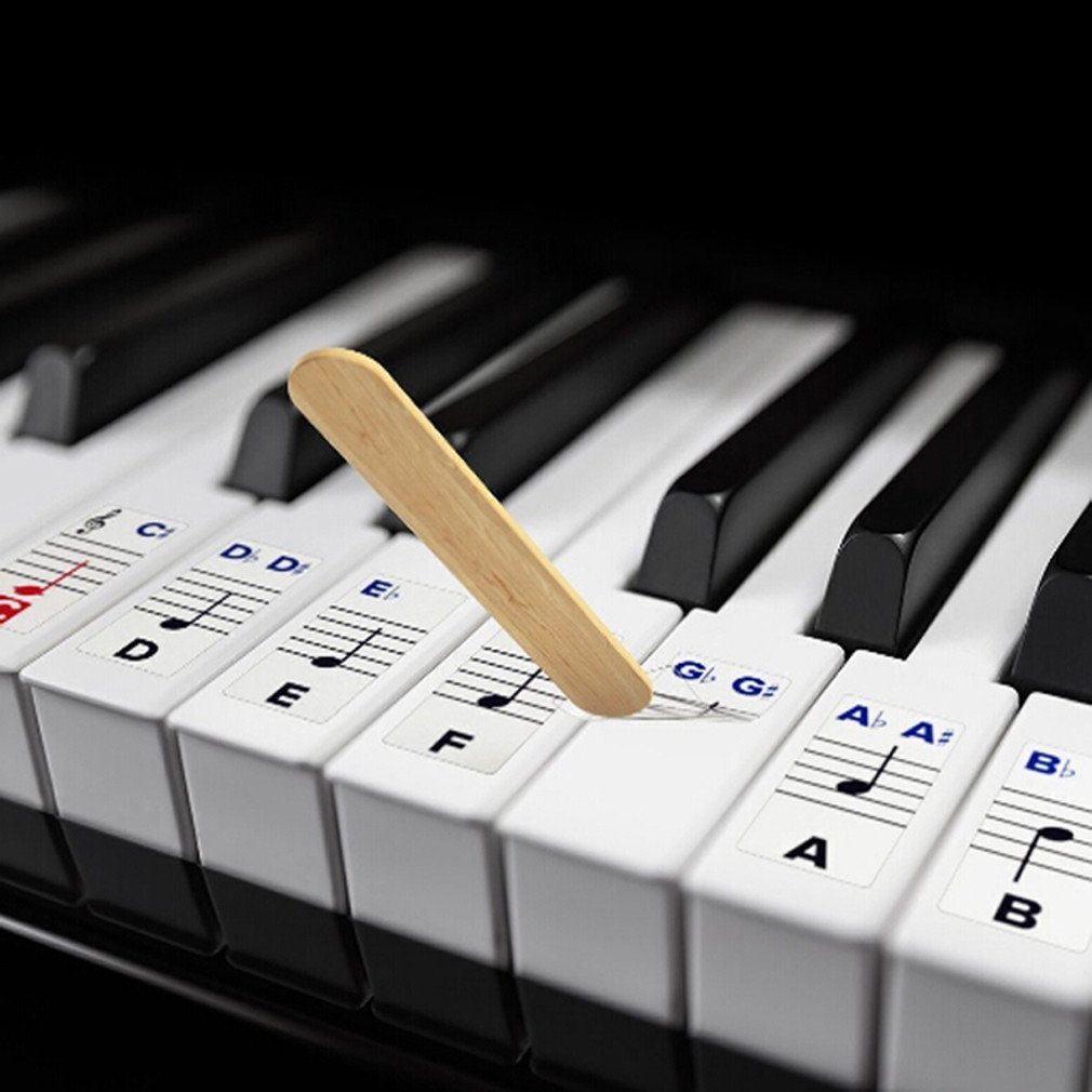 Dolland Piano Stickers for Keys – Removable w/ Double Layer Coating for 54 / 61 / 76 / 88 Keyboards