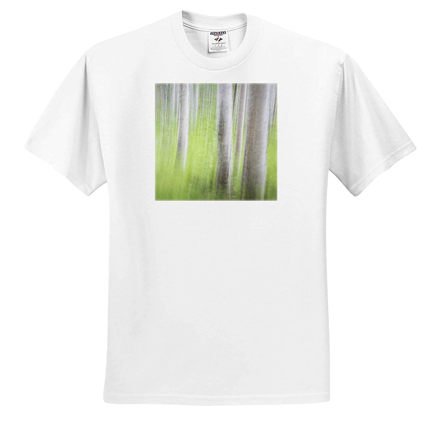 Alaska USA 3dRose Danita Delimont Abstracts - Adult T-Shirt XL Abstract Motion Blur of Birch Trees ts/_314459