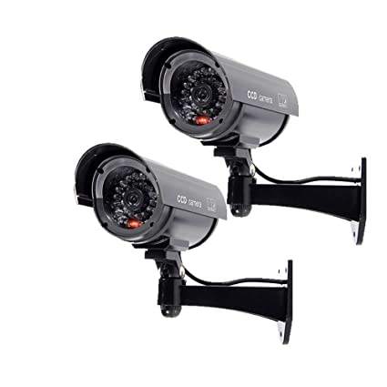 SODIAL(R) Camara 2x luz intermitente de seguridad simuladas vigilancia de la falsificacion LED