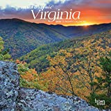 Virginia Wild & Scenic 2020 7 x 7 Inch Monthly Mini Wall Calendar, USA United States of America Southeast State Nature