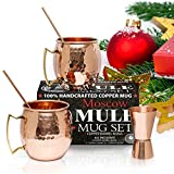 Benicci Set of 2 Pure Solid Moscow Mule Copper Mugs with Straws and Jigger, 16-Ounce