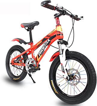 "NEW 24/"" INCH BOYS MOUNTAIN BIKE Kids Youth Bicycle Outdoor 10 Years /& Up Silver"