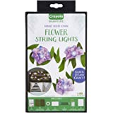 Crayola DIY String Lights Kit, Flower Lights, Gift for Crafters, Ages 14, 15, 16, 17