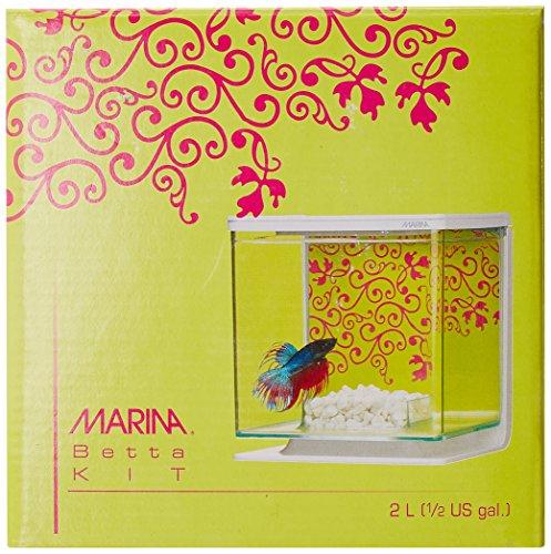 Marina Betta Pals Kit, Girl Theme by Marina