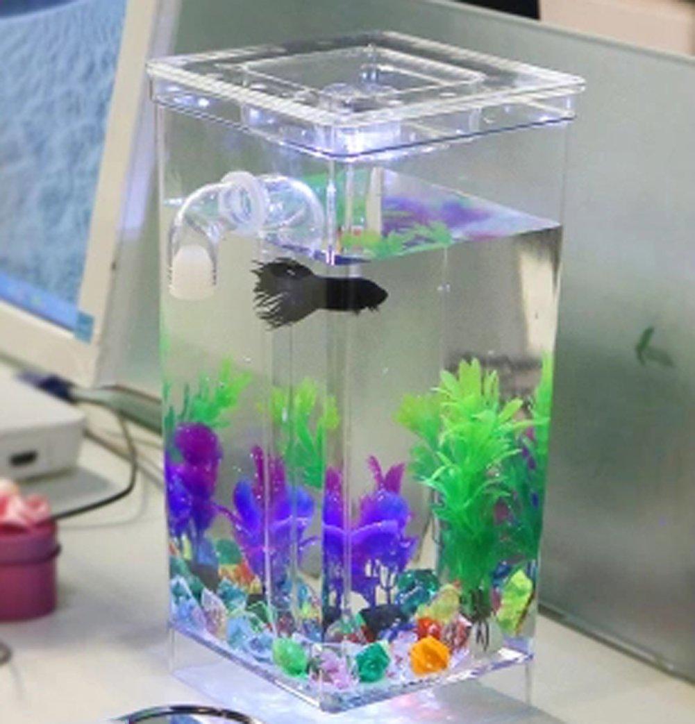 Jiangu - pecera pequeña de autolimpieza, acuario, pecera de escritorio, acuario mini acuario acrílico creativo, acuario sin agua: Amazon.es: Productos para ...