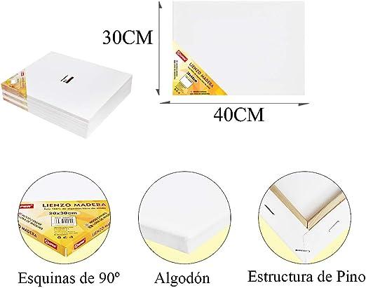 Pack de 6 lienzos 30 x 40cm de 100% algodón apto para óleo, acrílico y mixto, pre-estirado, color BLANCO. Libre de ácido.: Amazon.es: Hogar
