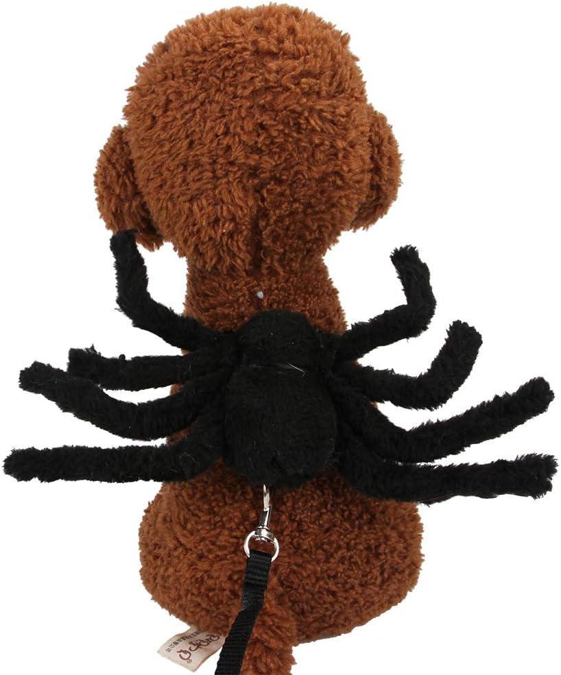 HXHON Correa de Gato para Halloween, araña en el Pecho, Correa ...