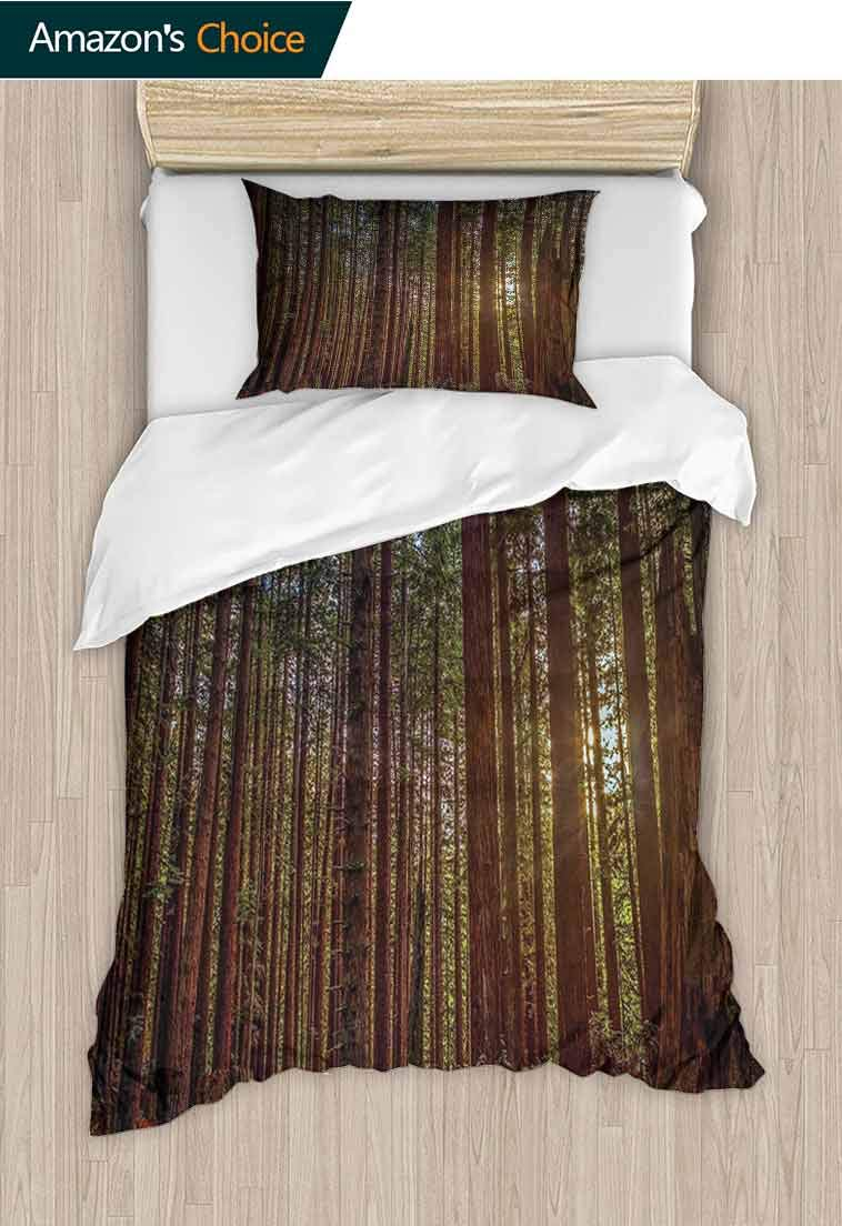Forest Custom Made Quilt Cover and Pillowcase Set, Redwood Forest in California USA Nature Outdoors Landscape Woods Park, Print, Decorative Quilted 2 Piece Coverlet Set with 1 Pillow Shams, by carmaxshome