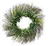 Celebrate the Home Decorative Foliage Wreath, 24-Inches, Succulents