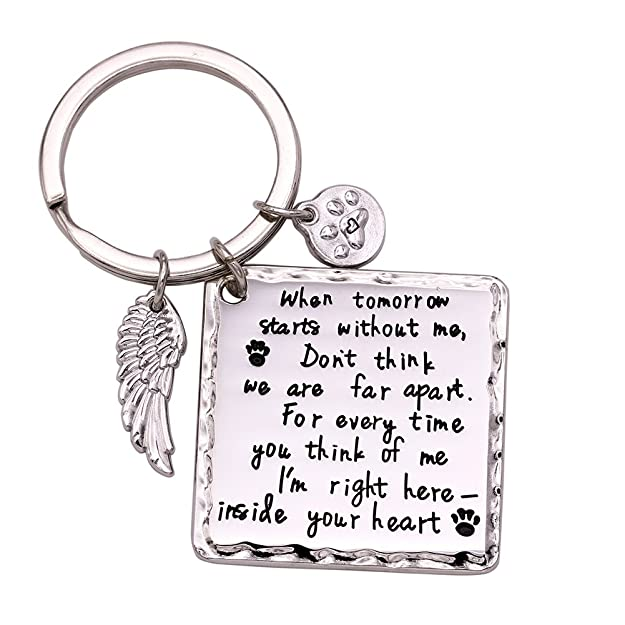 2067f8591493 Amazon.com: Melix Home Pet Memorial Keychain, Family Loss Dog Cat Pet  Jewelry: Jewelry