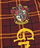 INTIMO Harry Potter Big Boys Houses Plaid Pajama