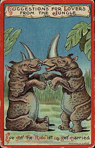 Suggestions for Lovers From the Jungle Other Animals Original Vintage Postcard from CardCow Vintage Postcards
