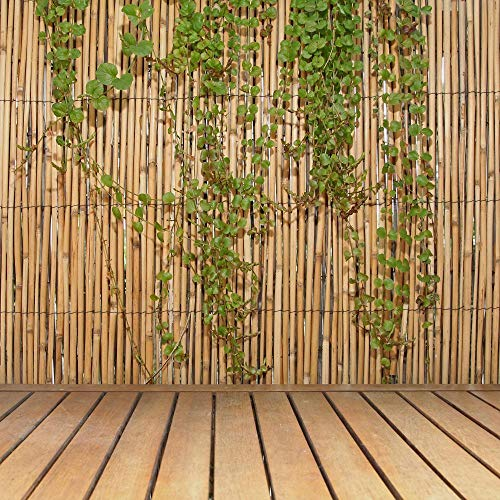 FOREVER BAMBOO Jumbo Reed Bamboo Screen Fence (Natural, 6 ft. H x 16 ft. L) (Bamboo Screen Fence)