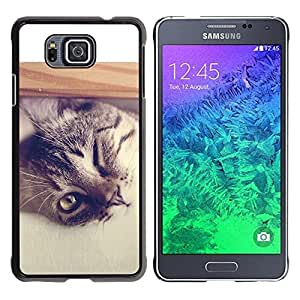 TopCaseStore / la caja del caucho duro de la cubierta de protección de la piel - Cool Cat - Samsung GALAXY ALPHA G850