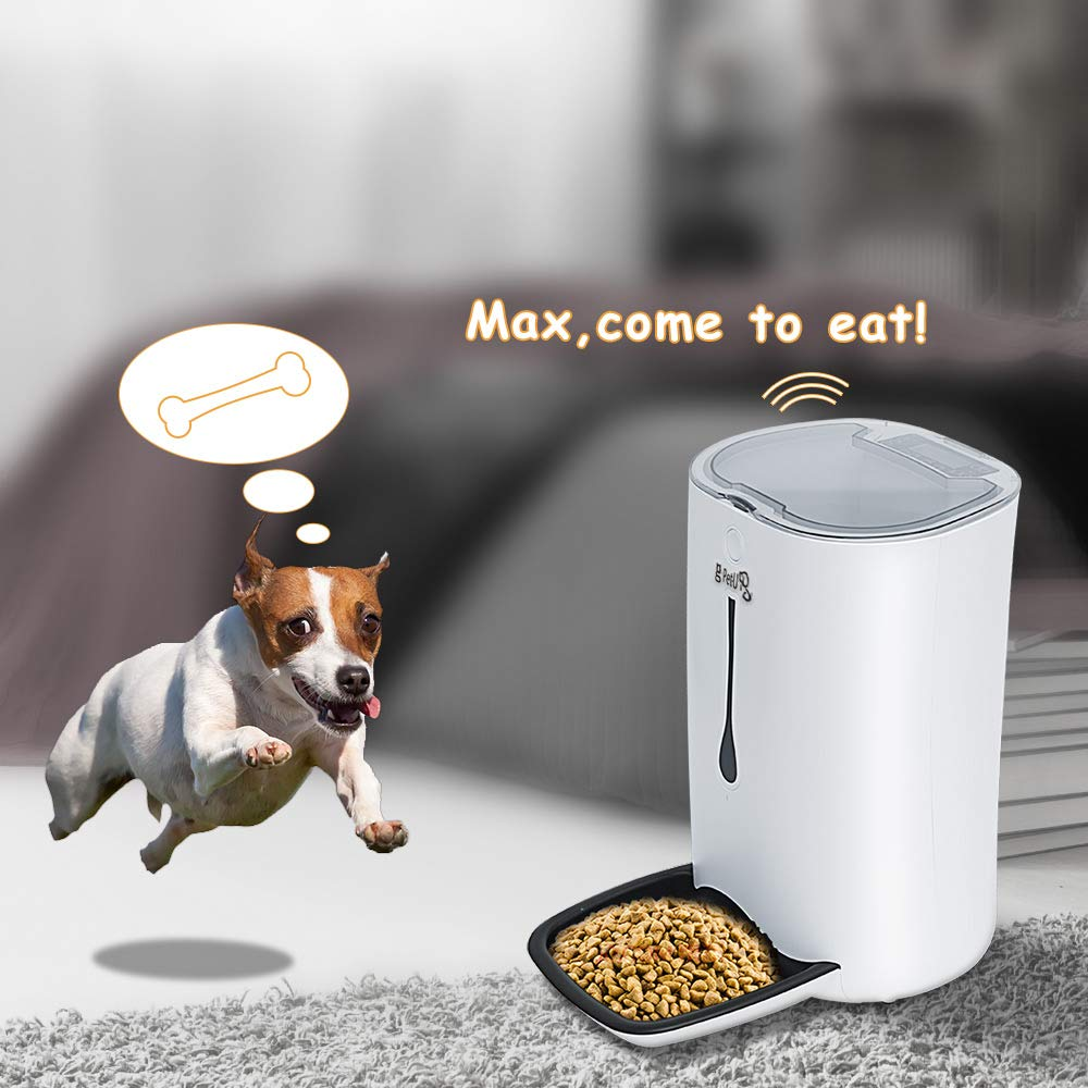Comederos automáticos de Mascotas Para Perros y Gatos, Pet-U con Pantalla LCD, hasta 4 Comidas al Día, Grabación DE 8 Segundos: Amazon.es: Productos para ...