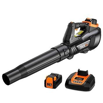 TACKLIFE Soplador a Batería, 40V 2.5Ah Soplador, Velocidad ...